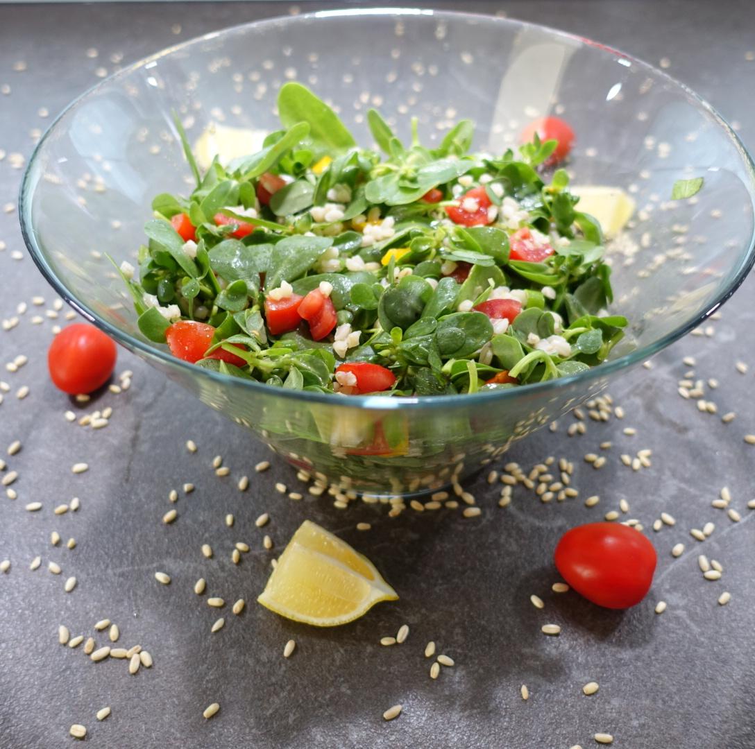 Fırınlanmış Patlıcanlı Semizotu Salatası Tarifi